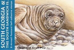 SOUTH GEORGIA, 2004, Booklet 1, Elephant Seal Pup - South Georgia