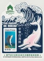 S. Tome Principe 2018 Mi. Bl. ? Foil Marine Life Macau Faune Fauna Dauphin Dolphin Delfin Fishes Poissons Fische - Sao Tomé Y Príncipe