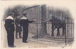Cpa -75-paris-4e Arr.-jardin Des Plantes-de La Coupe Aux Levres-marins-precurseur-edi Le Deley N°187 - Parks, Gardens