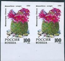 B3825 Russia Rossija Flora Cactus Flower Plant Pair Colour Proof - 1992-.... Federación