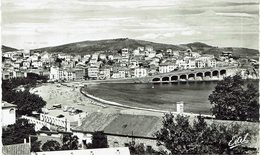CPA - France - (66) Pyrénées Orientales - Banyuls-sur-Mer - Vue Prise De Miramar - Banyuls Sur Mer