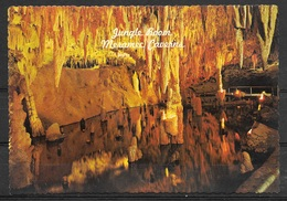 Missouri, Meramec Caverns, Jungle Room, Unused - Other