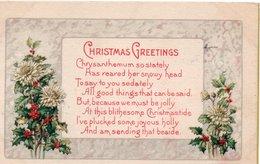 CHRISTMAS GREETINGS-VIAGGIATA 1919 - Altri