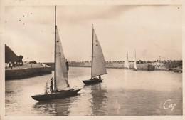 76 Saint Valery En Caux. Bateaux De Plaisance Rentrant Au Port - Saint Valery En Caux