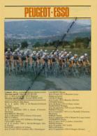 CYCLISME : PHOTO, TOUR DE FRANCE 1981, L'EQUIPE PEUGEOT-ESSO, BERNAUDEAU, BOSSIS, DUCLOS-LASSALLE, MILLAR, BOURREAU... - Cycling