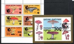 BATOUM BATUM, CHAMPIGNONS / MUSHROOMS, PHILAKOREA 1994, FANTAISIE / CINDERELLA, 6 Valeurs Et 1 Bloc, Neufs / Mint. R568 - Fantasy Labels