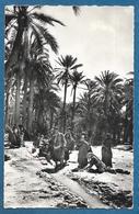 TUNISIE DANS L'OASIS 1959 - Tunisia