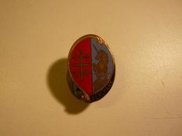 Insigne 1° Régiment De Hussards Parachutistes BERCHENY - DRAGO  AVEC CUIR - Army