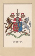 Chester Cheshire UK, Coat Of Arms, Heraldry C1910s/20s Vintage Postcard - Chester