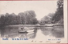 Bruxelles Lac Du Bois De La Cambre Parc Ter Kameren Bos (En Très Bon Etat) (In Zeer Goede Staat) - Bossen, Parken, Tuinen