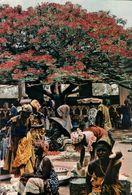 CARTE POSTALE D'AFRIQUE - MARCHANDES SOUS UN FLAMBOYANT - L'AFRIQUE EN COULEURS - Postcards