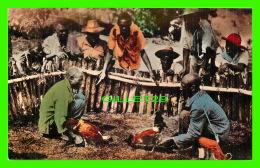 PORT-AU-PRINCE, HAITI - BATAILLEURS DE COQS - COCK FIGHTERS -  EDITION PAUL COUBA - - Haïti