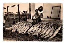 GABON . PORT-GENTIL . LA PÊCHE SPORTIVE DU BARRACUDA - Réf. N°18918 - - Gabon
