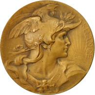 France, Médaille, Comice Agricole De L'Arrondissement De Lille, 1853, Bottée - Other