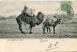 TURQUIE(SMYRNE) ANE - Turquie