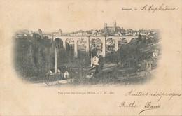 Semur (21 Côte D'Or) Vue Prise Des Granges Millot - édit TM Dos Simple Circulée 1903 Boite Rurale G De Saint Euphrône ? - Semur
