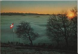 Winter-Stimmung Auf Dem Hörnli - Berggasthaus Hörnli-Kulm - Post Steg - ZH Zurich