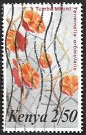 KENYA  1983 -  YT  250 -  Terminalia Orbicularis - Oblitéré - Kenya (1963-...)