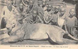 Afrique. Autres Pays : Missions De P.P Du Saint Esprit.  Chasse Au Lion  (voir Scan) - Cartes Postales
