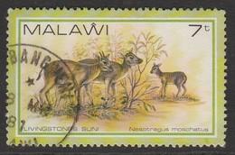Malawi 1981 Wildlife 7 T Multicoloured SW 356 O Used - Malawi (1964-...)