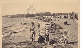 44. SAINT BREVIN LES PINS. ANIMATION SUR LA PLAGE. ANNÉE 1954+ TEXTE - Saint-Brevin-les-Pins