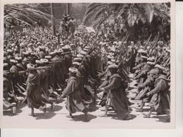 TUNIS VICTORY PARADE  FRENCH NATIVE TROOPS GOUMS FOTO DE PRESSE Brian L Davis Archive - Guerra, Militari