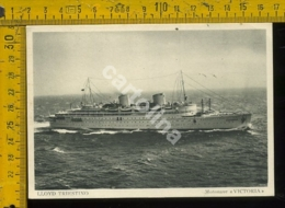 Marina Navigazione Nave Lloyd Triestino Victoria - Altri