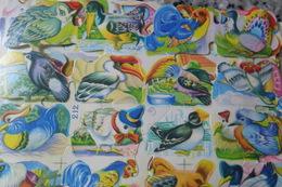 Scraps Birds Oiseaux - Animals