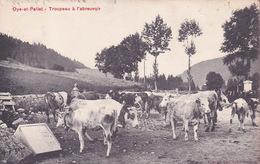 CPA - 25 - OYE Et PALLET - Troupeau à L'abreuvoir - France