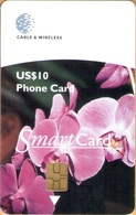 Grenada - GRE-C4, C&W, Orchid, GEM5 (Black), 10 EC$, 2000, Used As Scan - Grenada