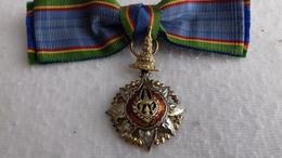 MINIATURE GRAND CROIX COURONNE DE SIAM - Medailles & Militaire Decoraties