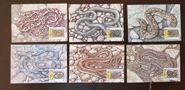 BULGARIE Reptiles, Reptile, Serpents Serpent. Yvert BF 3268/73 Cartes Maximum, FDC, Premier Jour - Serpents