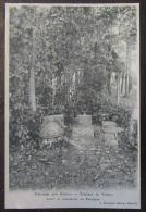 Scellières (Aube) - Carte Postale Précurseur - Tombeau De Voltaire Avant Sa Translation Au Panthéon - Non-Circulée - Romilly-sur-Seine
