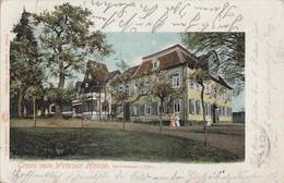 AK Mühlhausen I. Thüring. Gruss Vom Weissen Hause Gel. 16.7.02 Nachsendung - Mühlhausen