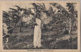 Somalia Italiana - Contadinella - HP1427 - Somalia