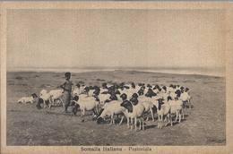 Somalia Italiana - Pastorizia - HP1432 - Somalia