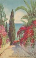 XPOR.65.  Funchal - Madeira - Reid's Palace Hotel - Madeira