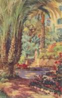 XPOR.66.  Funchal - Madeira - Reid's Palace Hotel - Madeira