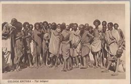 Colonia Eritrea - Tipi Indigeni - HP1446 - Eritrea