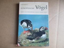 Europäische Vögel (Claus König) éditions De 1967 - Livres, BD, Revues