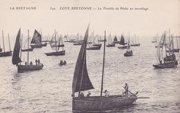 CPA - 29 - CONCARNEAU - La Flottille De Pêche Au Mouillage - 540 - Concarneau
