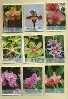 Privatpost - RPV Briefservice - Blumen - Orchideen - 9 Werte - Orchideen