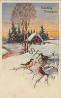 Gelukkig Nieuwjaar - Happy Newyear - Bonne Année (A2209 - Nouvel An