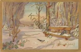Gelukkig Nieuwjaar - Happy Newyear - Bonne Année (A2568 - Nouvel An