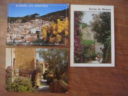 France - Var - 3 Cartes De BORMES LES MIMOSAS - Bormes-les-Mimosas