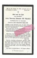 D 406. ALICE DE TILLOUX  Echtg. C. DE MAESSCHALCK - °SAS-VAN-GENT 1878 / + SELZAETE 1919 - Images Religieuses