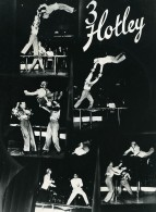 Danemark Music Hall Cirque Artiste Acrobates 3 Hotley Ancienne Photo Knudsen 1950 - Professions