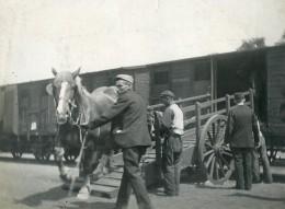 France Chevaux Descendant D'un Train Ancienne Photo 1900 - Fotos