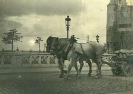France? Chevaux Chariot Transport De Marchandises Ancienne Photo 1900 - Photographs