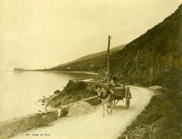 Italie Lac De Garde? Route De Torri Cheval Chariot Ancienne Photo 1900 - Antiche (ante 1900)